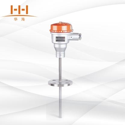 WRNK-440固定法兰隔爆铠装热电阻的图片