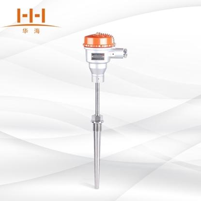 WRN-640固定螺纹锥形保护管热电偶的图片